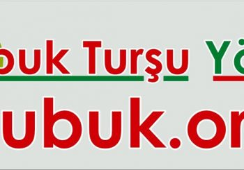 Çubuk Turşu Yöresi